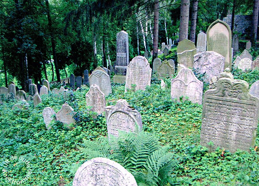 Joodse begraafplaats Třebíč-Tsjechië