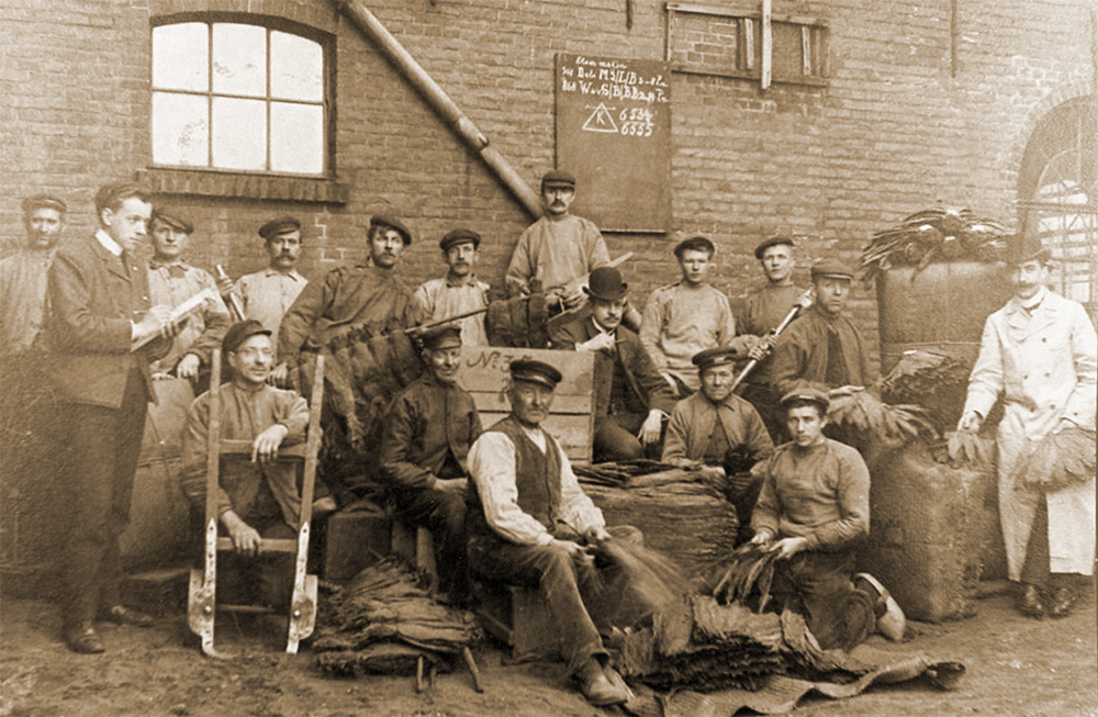 Personeel sigarenfabriek Koch