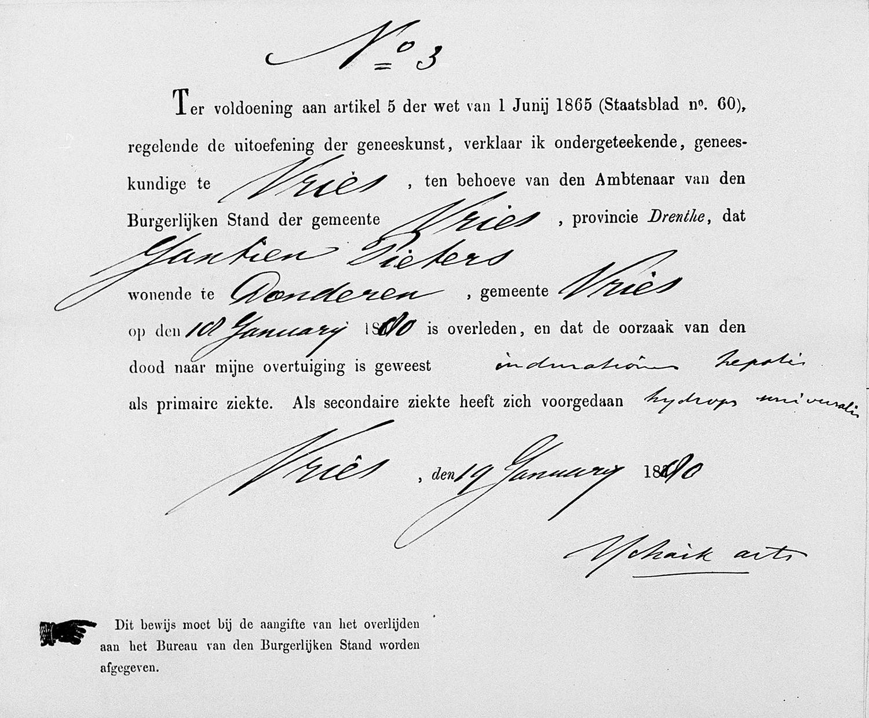 Voorgedrukte overlijdensverklaring uit 1880